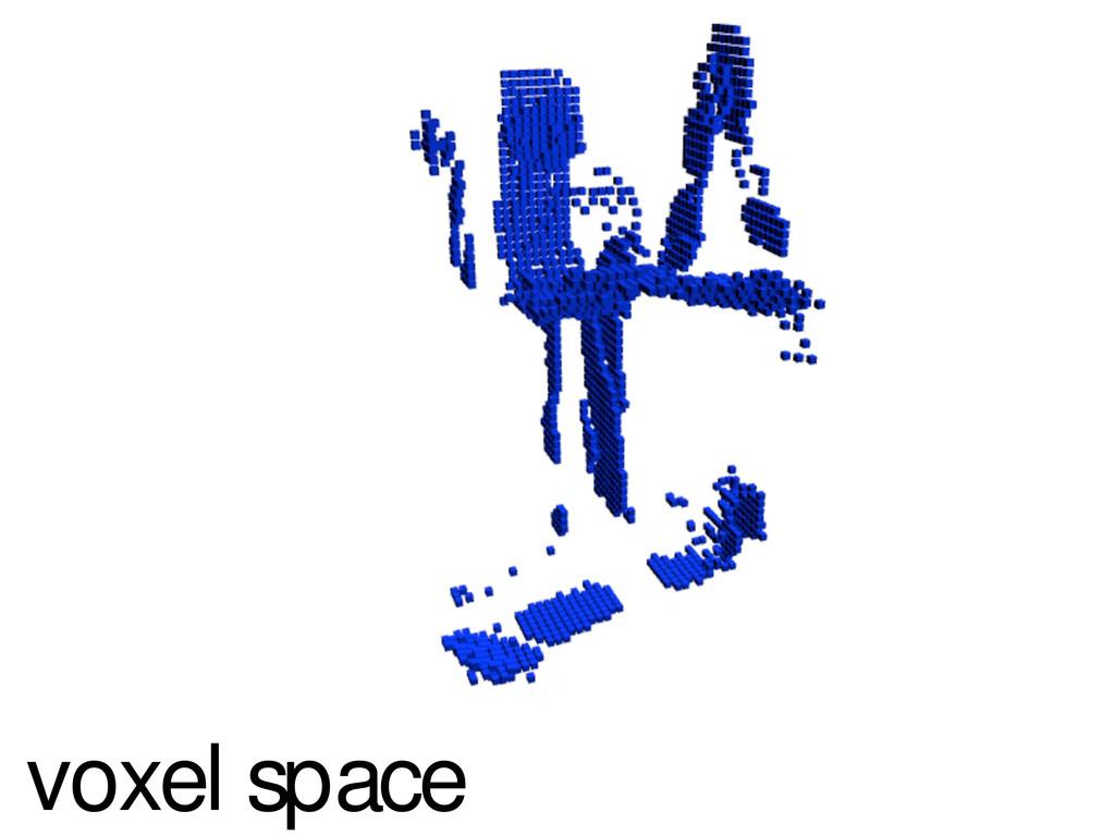 voxel space