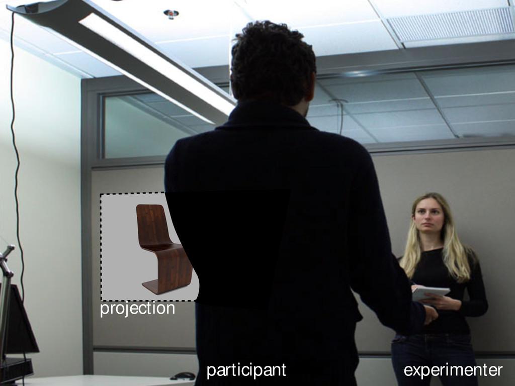 participant experimenter projection