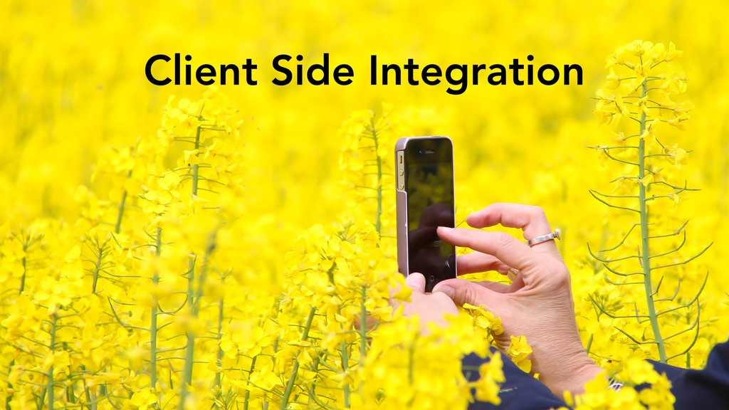 Client Side Integration