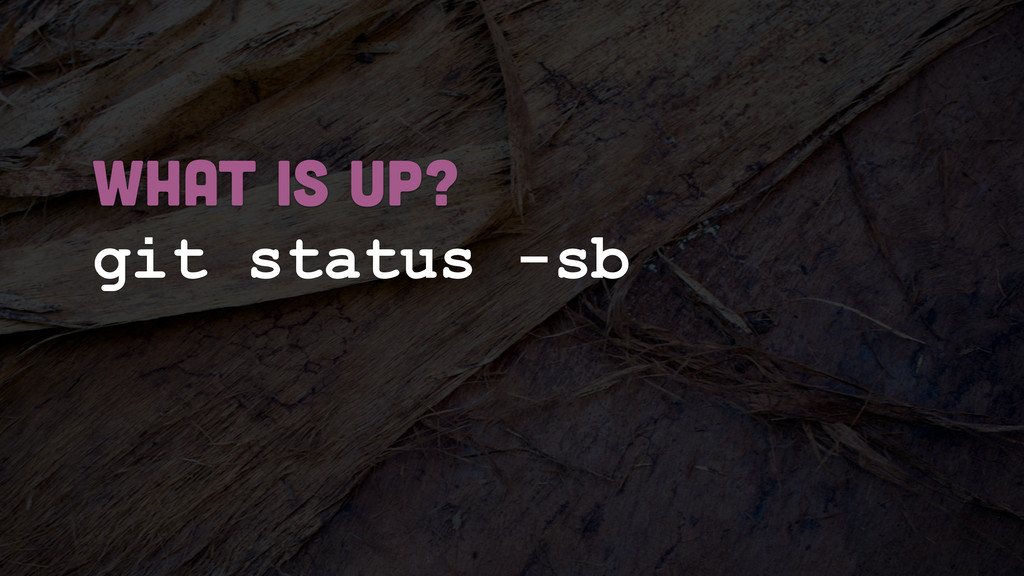 git status -sb what is up?