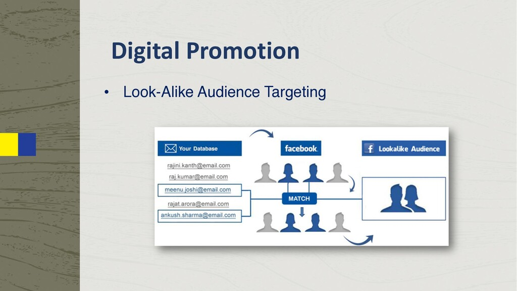Digital Promotion • Look-Alike Audience Targeti...