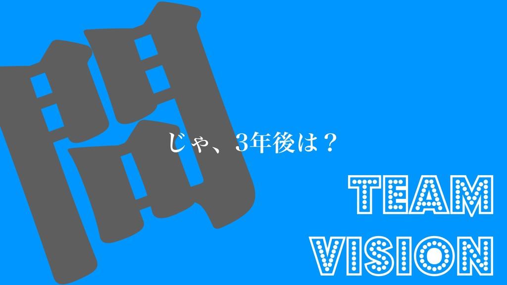  ͡Όɺޙʁ Team Vision