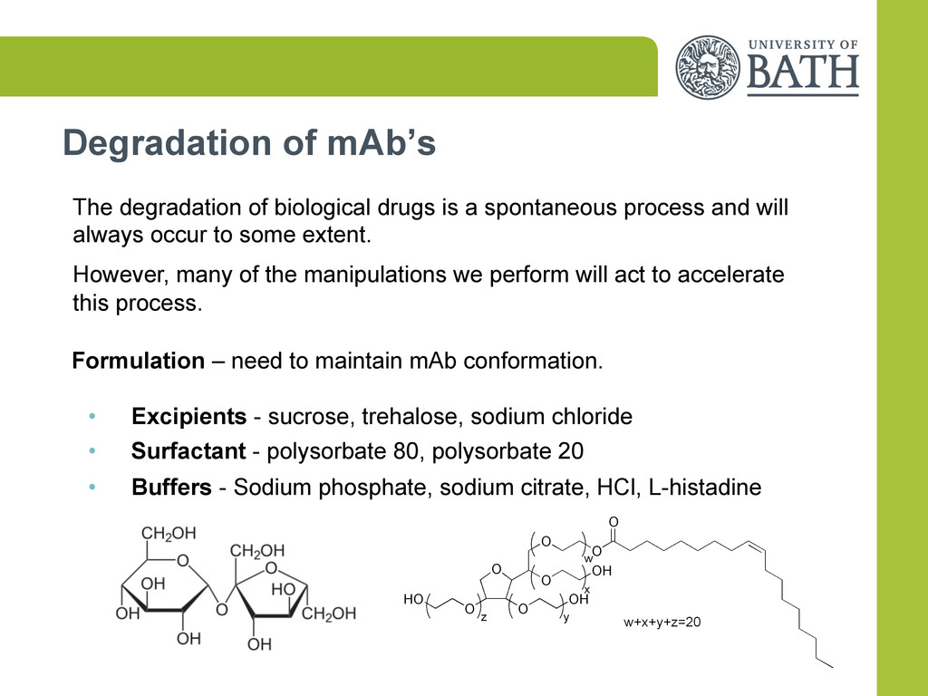 Degradation of mAb's The degradation of biologi...