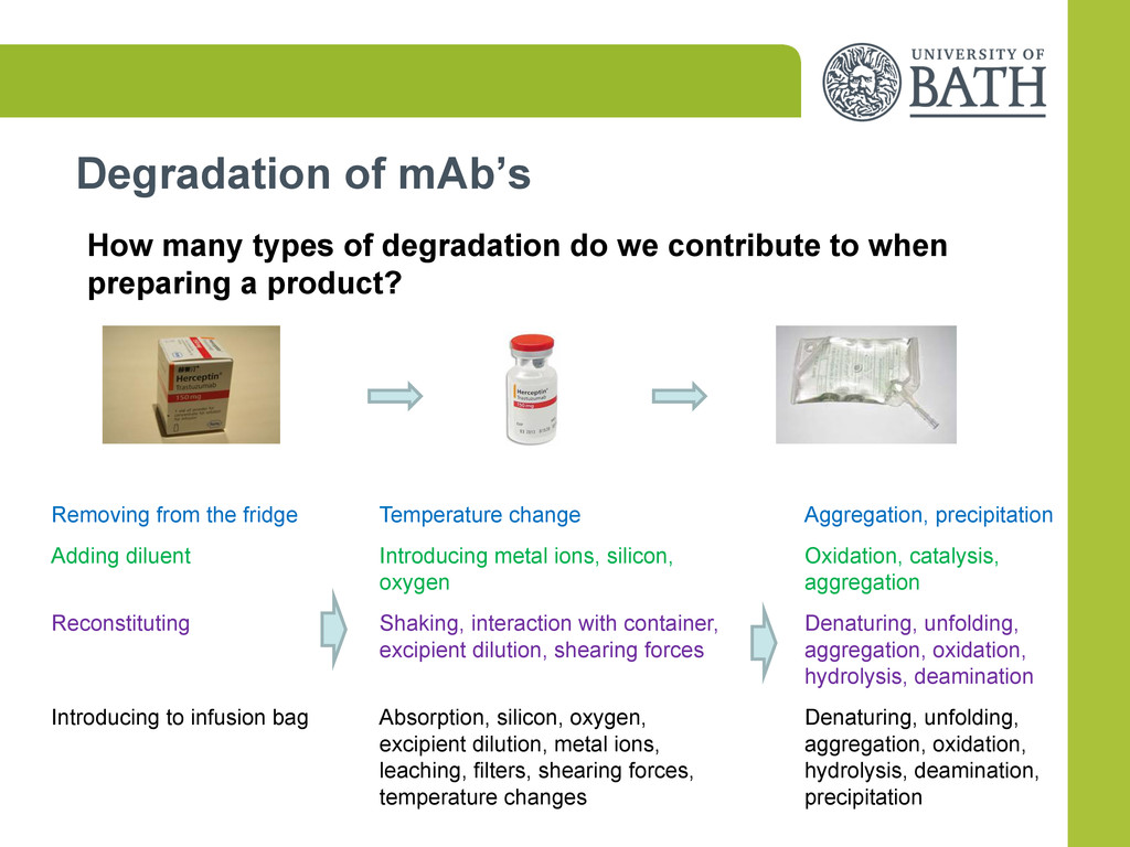 Degradation of mAb's How many types of degradat...