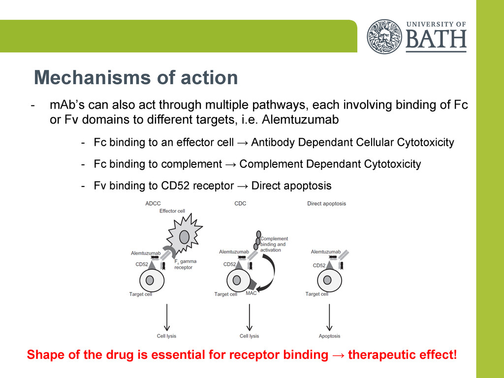 Mechanisms of action -  mAb's can also act thro...