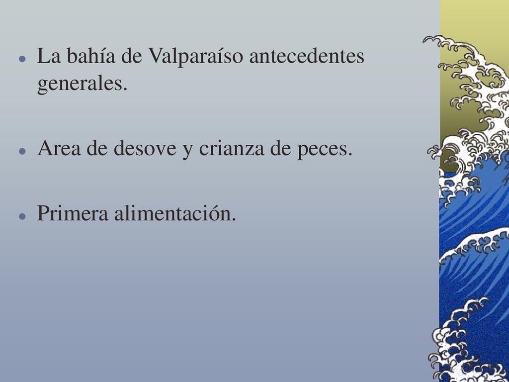  La bahía de Valparaíso antecedentes generales...