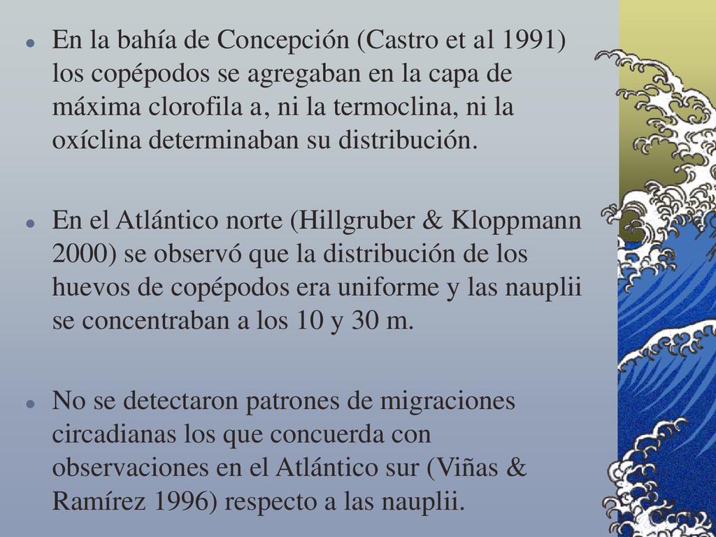  En la bahía de Concepción (Castro et al 1991)...