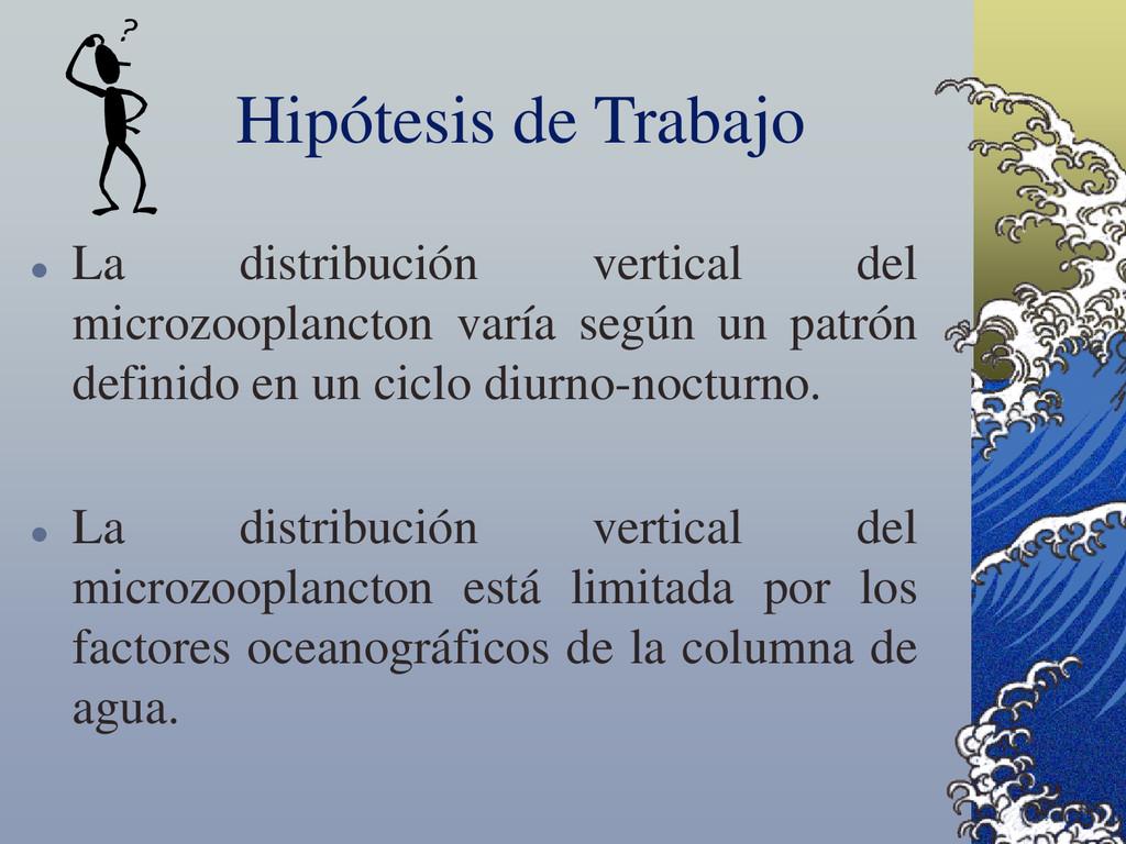 Hipótesis de Trabajo  La distribución vertical...