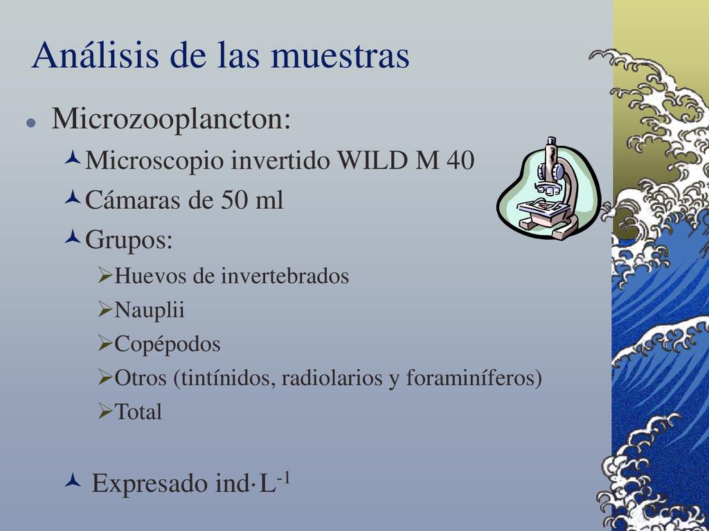 Análisis de las muestras  Microzooplancton: M...