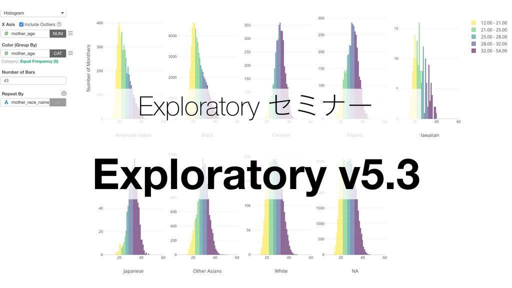 Exploratory ηϛφʔ Exploratory v5.3