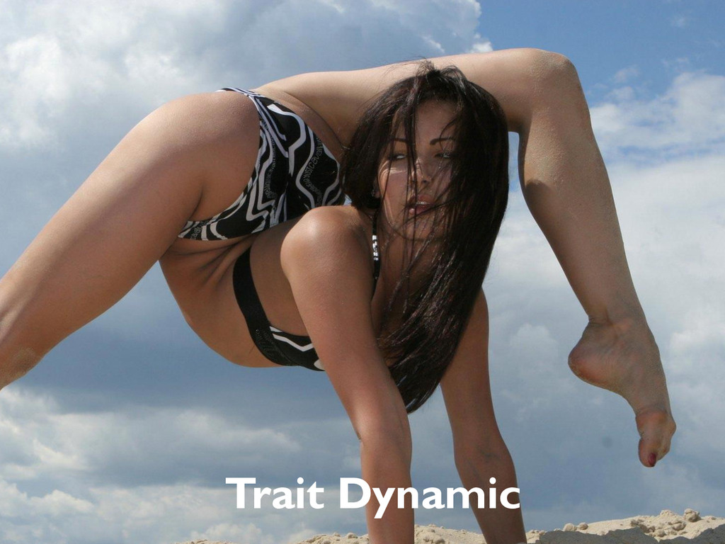 Trait Dynamic