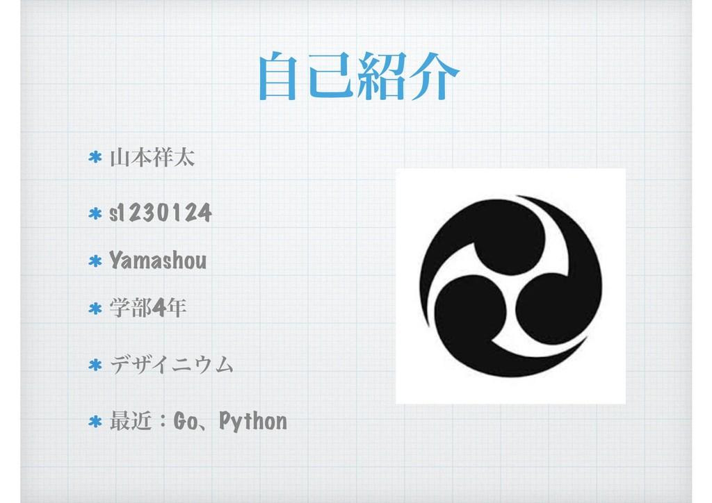 ࣗݾհ ຊଠ s1230124 Yamashou ֶ෦4 σβΠχϜ ࠷ۙɿGoɺP...