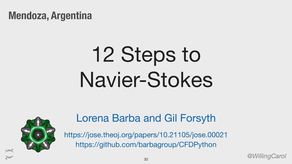 12 Steps to Navier-Stokes @WillingCarol 30 http...