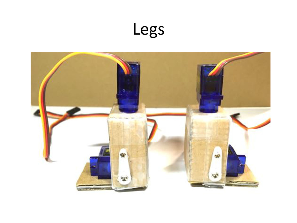 Legs)