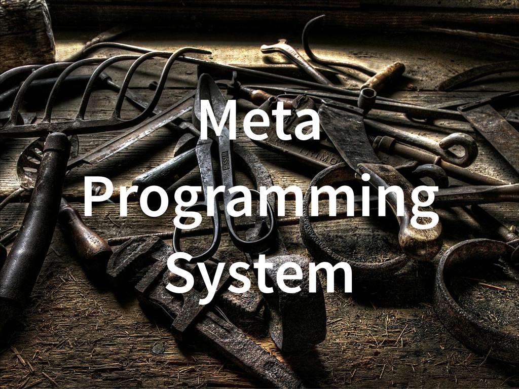 Meta Programming System