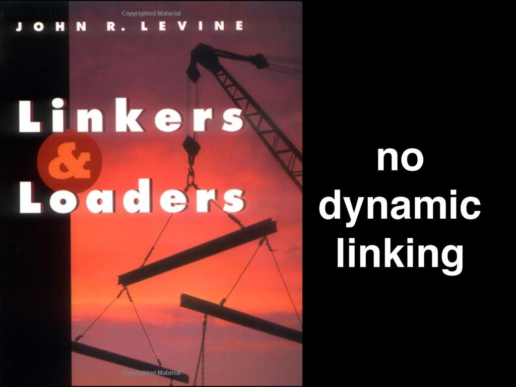 no dynamic linking