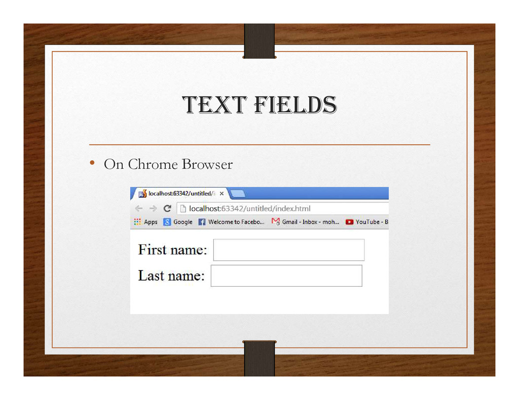tExt FIElDS • On Chrome Browser