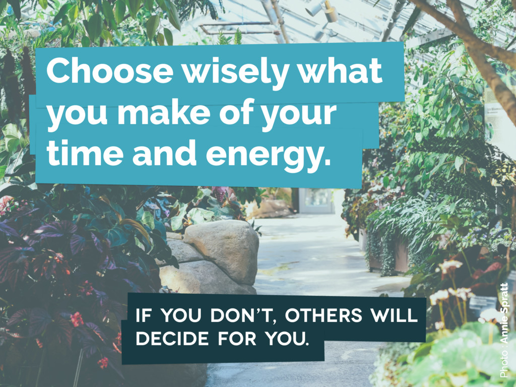 Choose wisely what