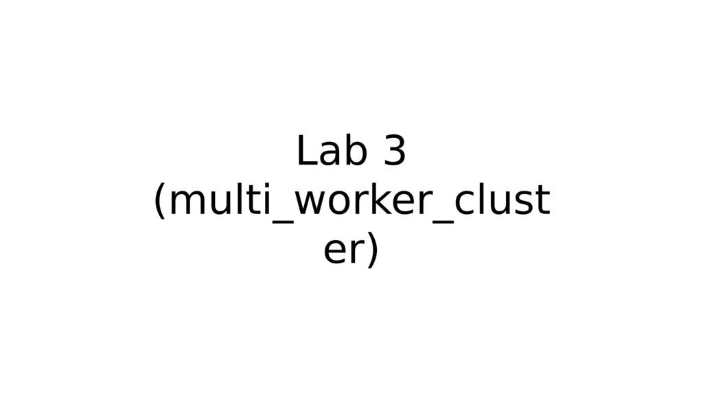 Lab 3 (multi_worker_clust er)