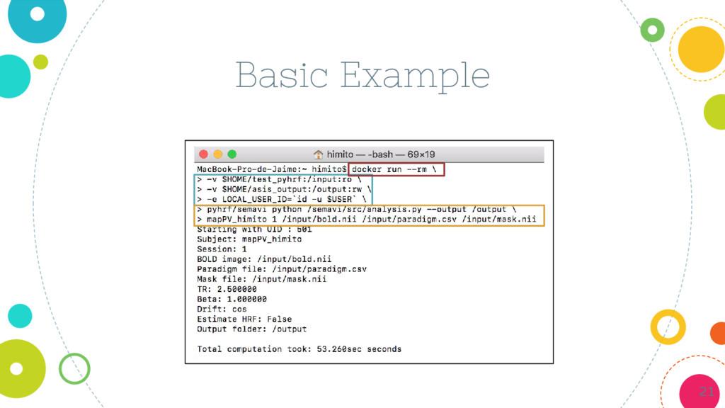 Basic Example 21