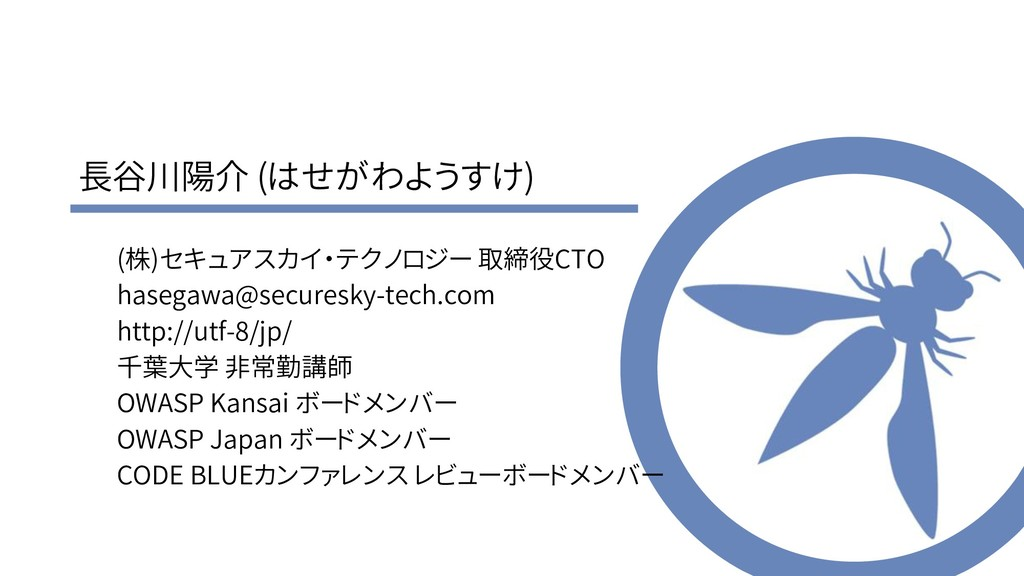 長谷川陽介 (はせがわようすけ) (株)セキュアスカイ・テクノロジー 取締役CTO haseg...
