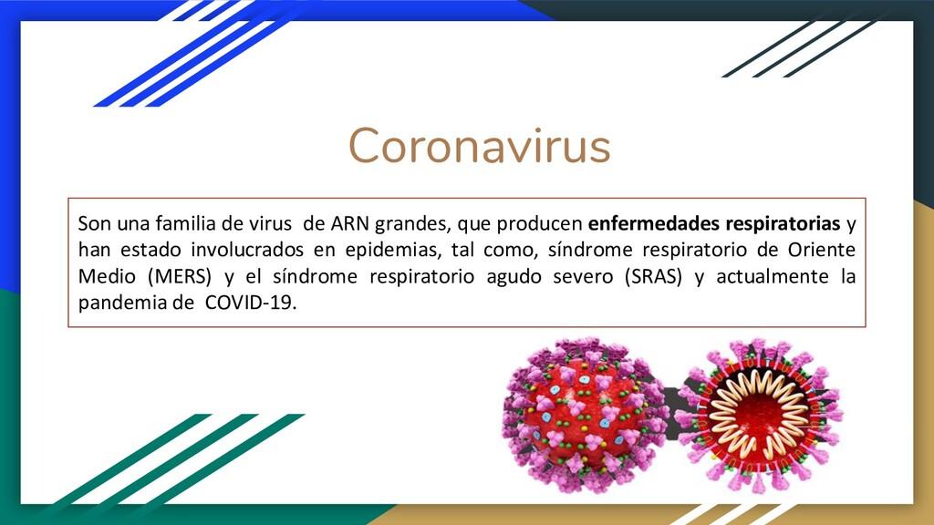 Coronavirus Son una familia de virus de ARN gra...