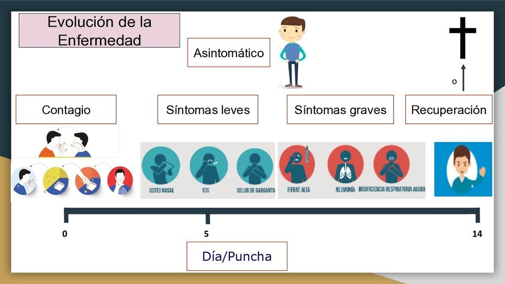 Evolución de la Enfermedad 5 14 0 ¿ Día/Puncha ...