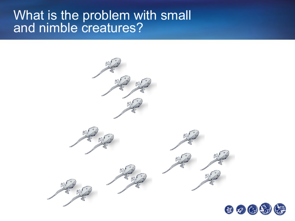 What is the problem with small and nimble creat...
