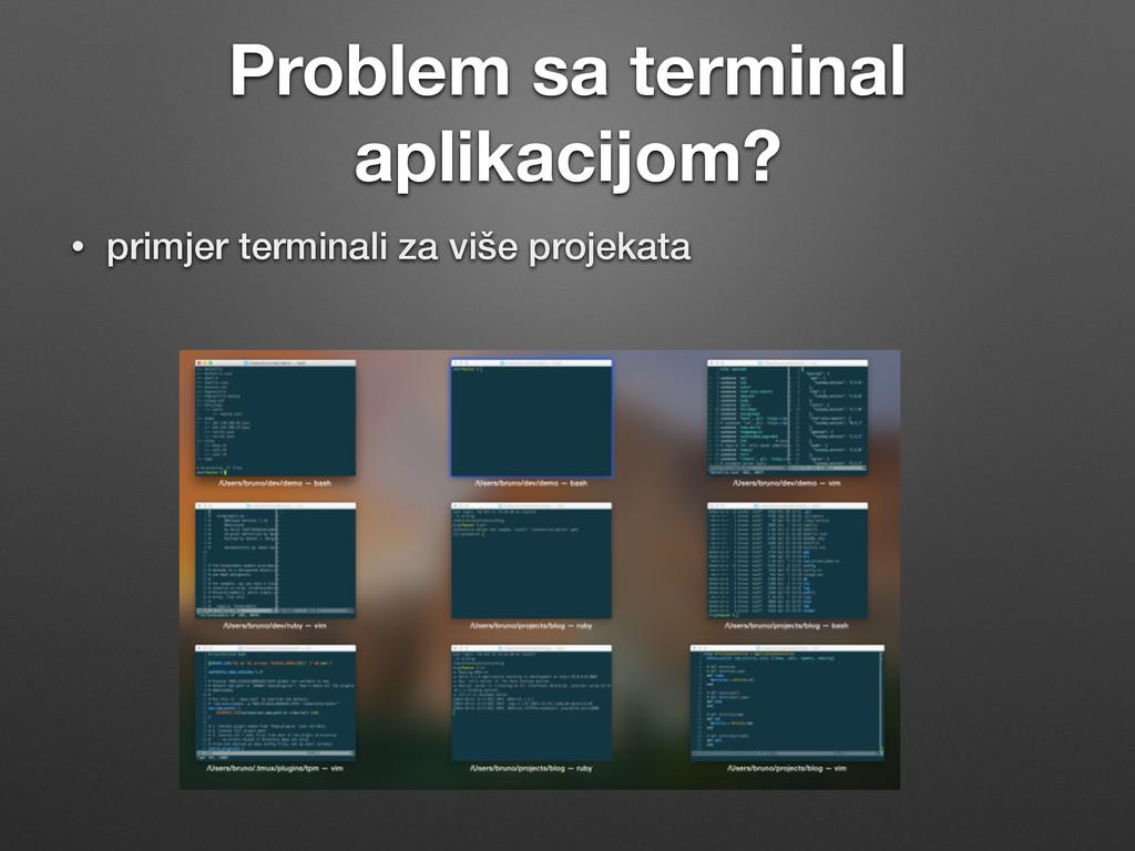 Problem sa terminal aplikacijom? • primjer term...