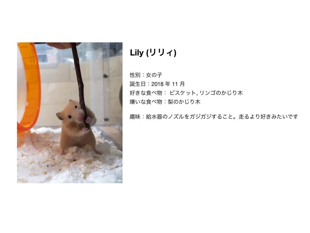 Lily (ϦϦΟ) ੑผɿঁͷࢠ  ੜɿ2018  11 ݄  ͖ͳ৯ɿ Ϗεέ...