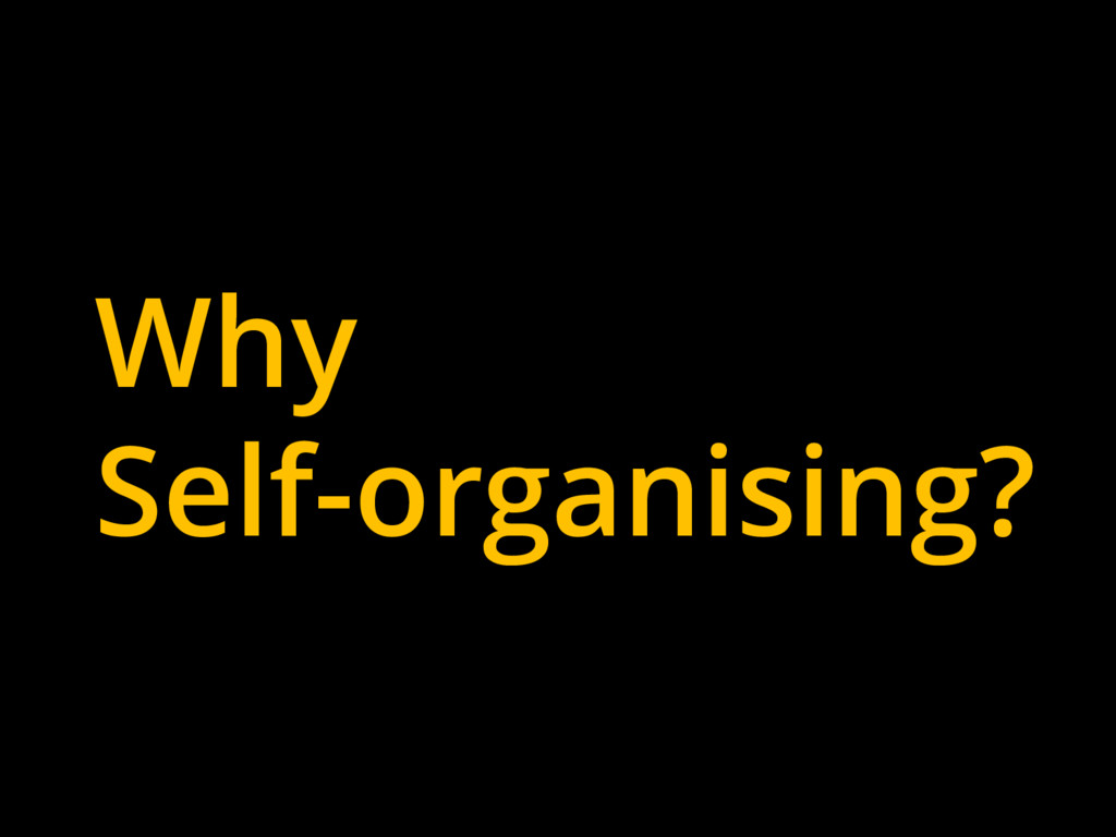 Why Self-organising?