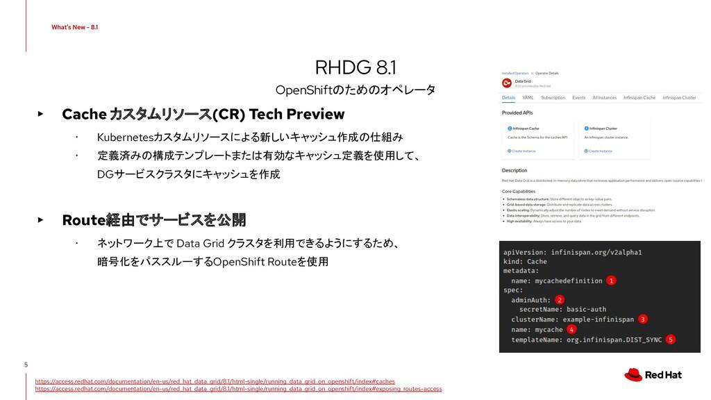 ▸ Cache カスタムリソース(CR) Tech Preview ・ Kubernetesカ...