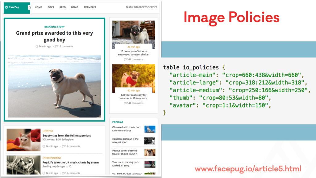 Image Policies www.facepug.io/article5.html