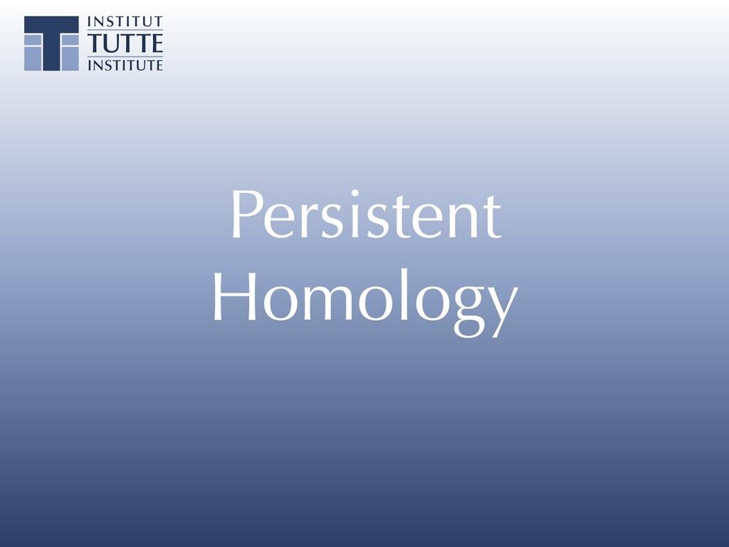 Persistent Homology