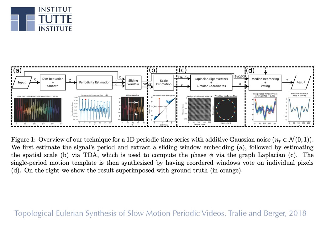 Topological Eulerian Synthesis of Slow Motion P...