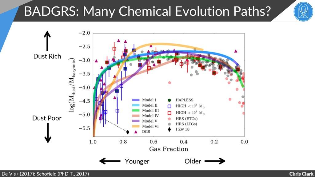 Chris Clark BADGRS: Many Chemical Evolution Pat...
