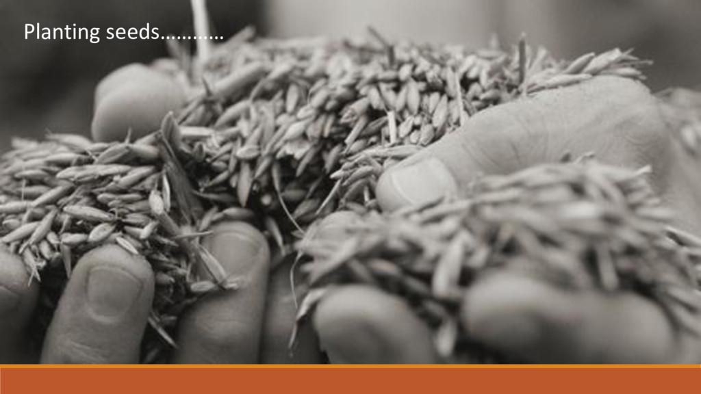 Planting seeds…………