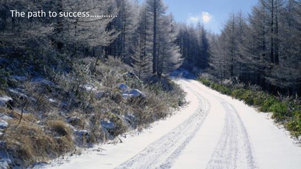 The path to success…………