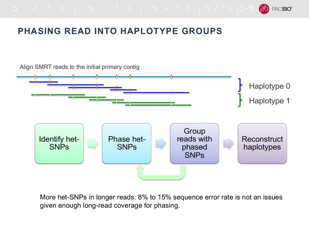 PHASING READ INTO HAPLOTYPE GROUPS Haplotype 0 ...