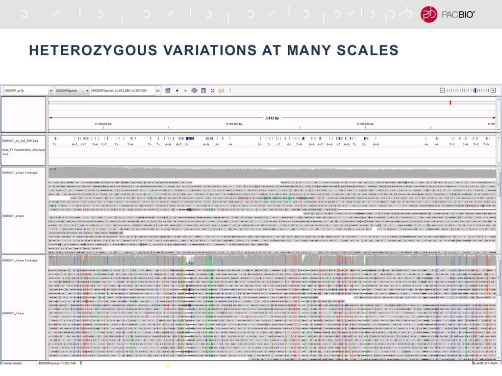 HETEROZYGOUS VARIATIONS AT MANY SCALES