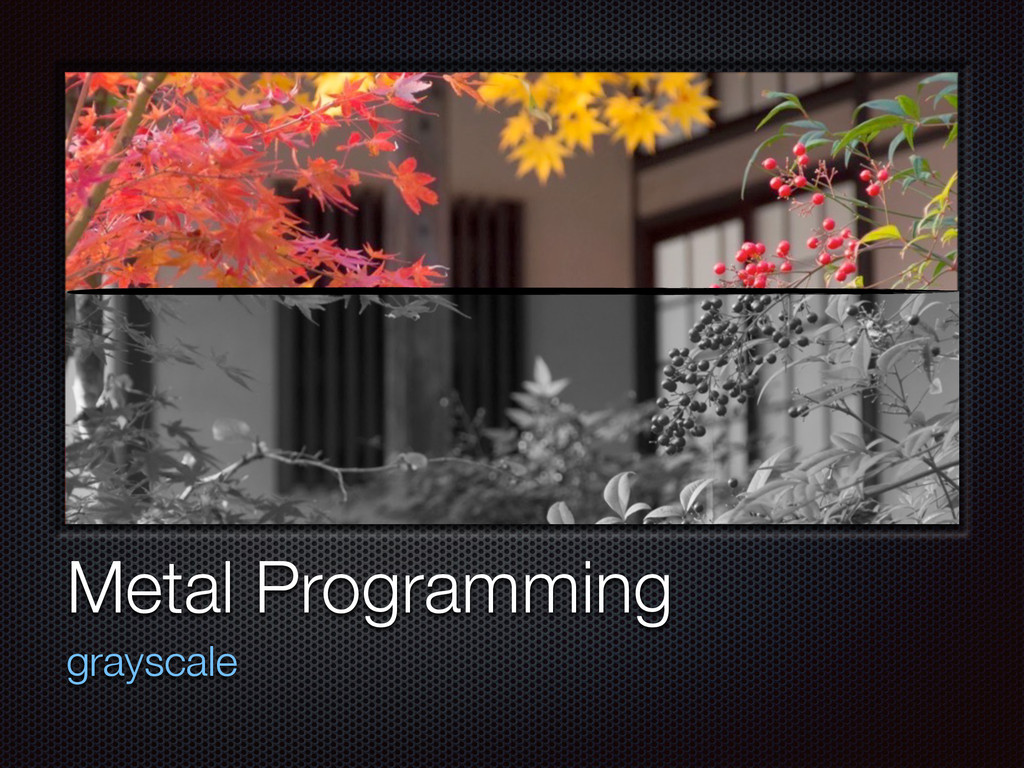 Text Metal Programming grayscale