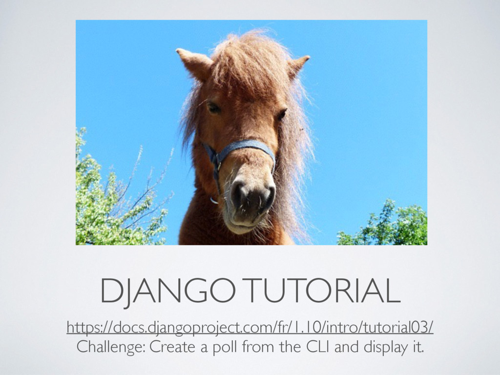 DJANGO TUTORIAL https://docs.djangoproject.com/...