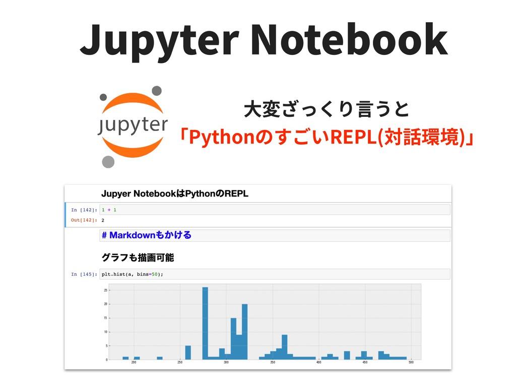 Jupyter Notebook Python REPL( )