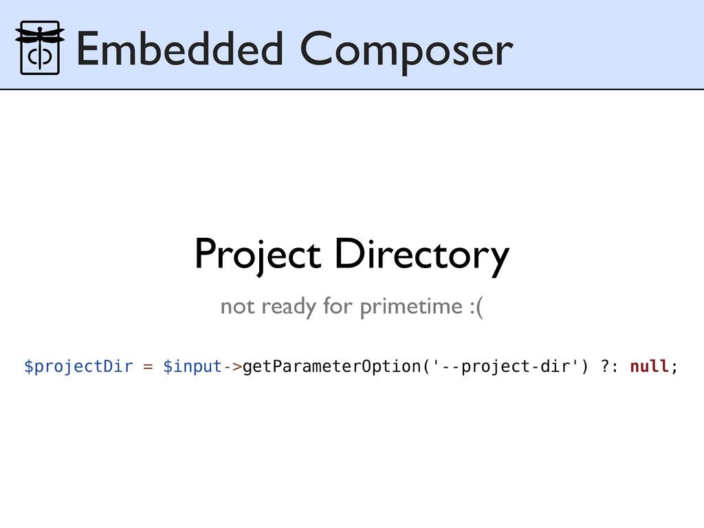 Embedded Composer $projectDir = $input->getPara...