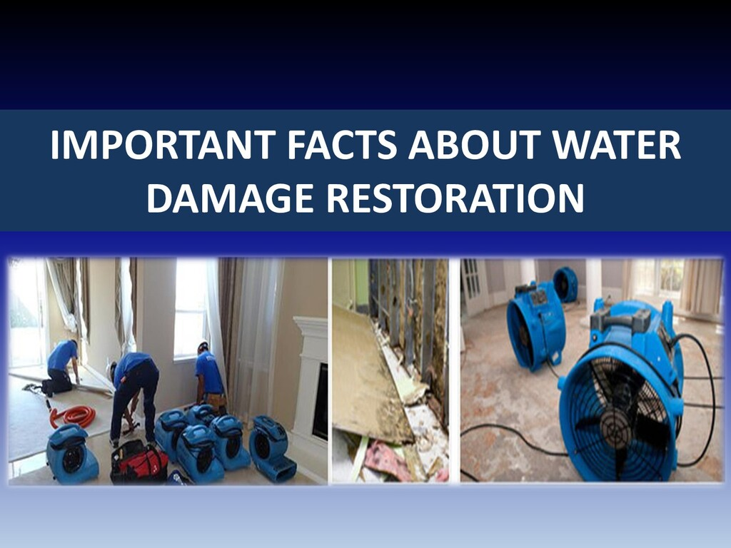 IMPORTANT FACTS ABOUT WATER DAMAGE RESTORATION