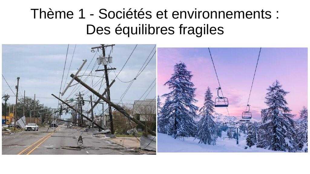 Thème 1 - Sociétés et environnements : Des équi...