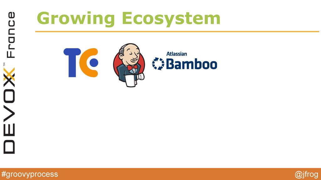 #groovyprocess @jfrog Growing Ecosystem