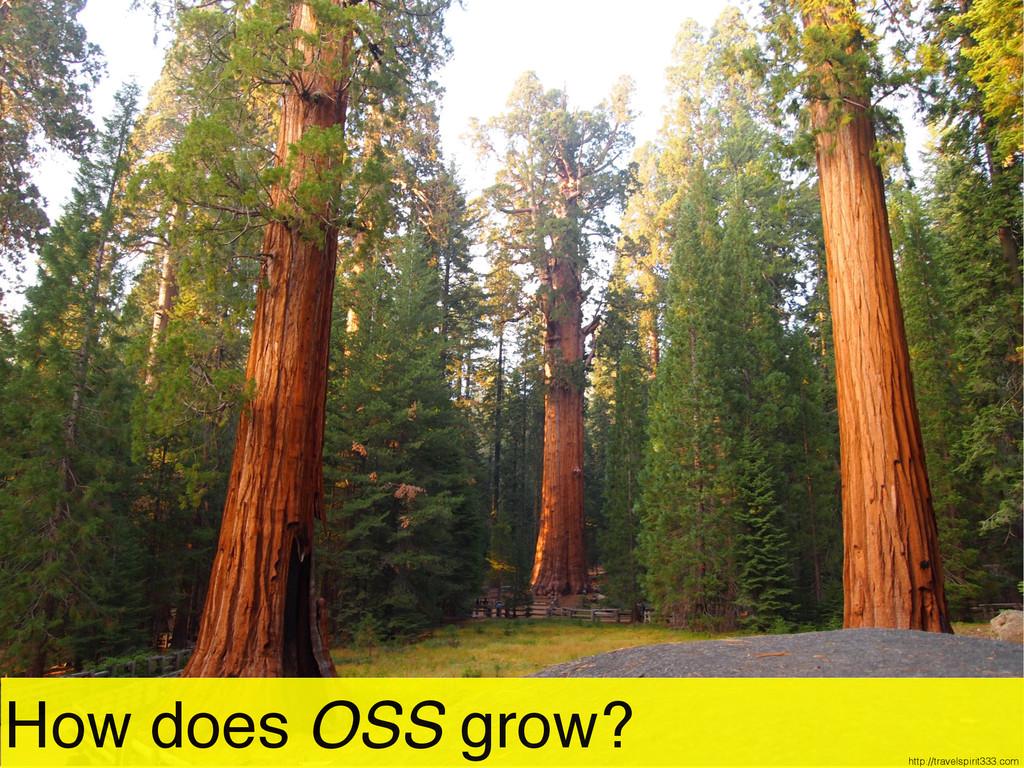 How does OSS grow? http://travelspirit333.com