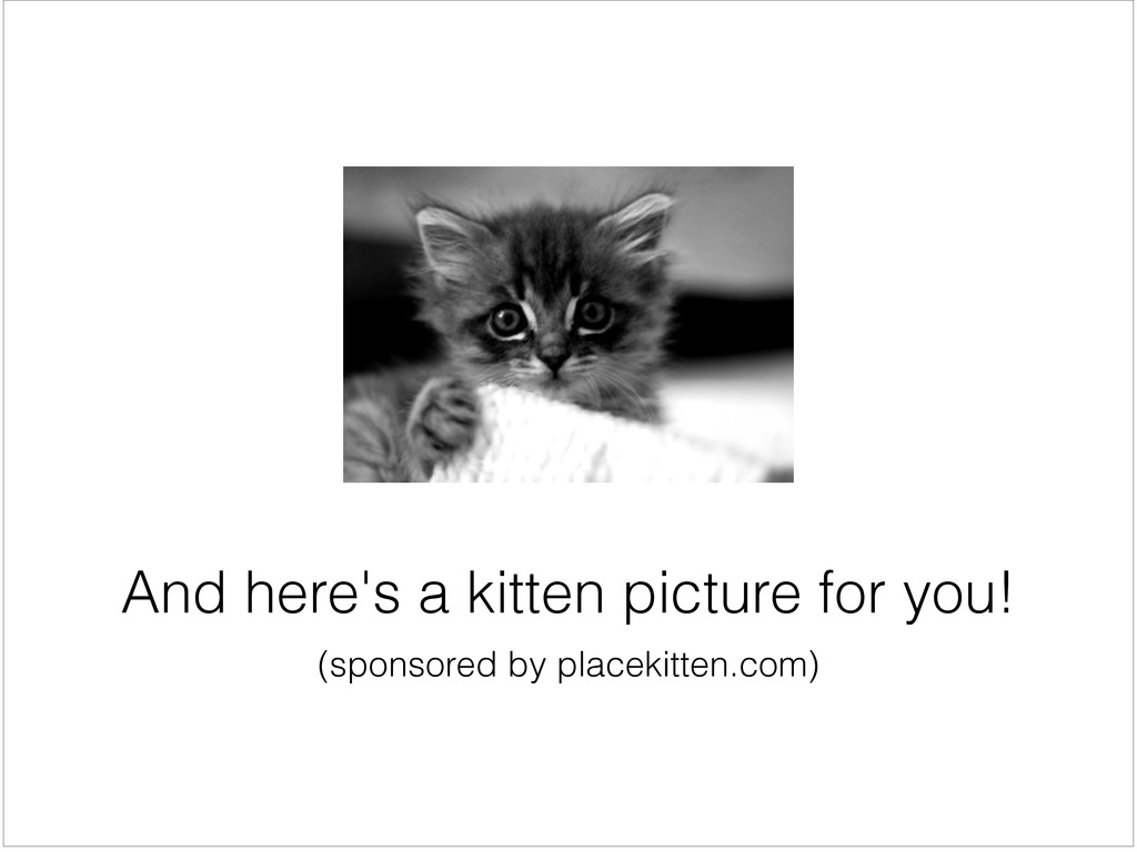 (sponsored by placekitten.com) And here's a kit...