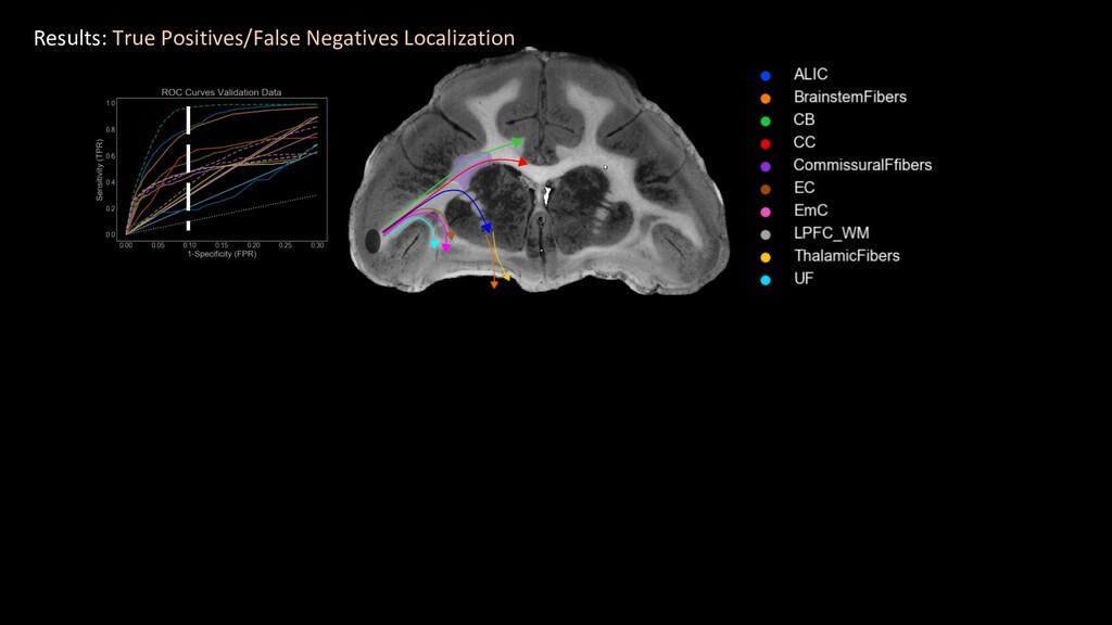 Results: True Positives/False Negatives Localiz...